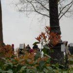 Paris - Marche pour la Justice et la Dignité